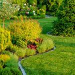Ogród z korą ogrodową